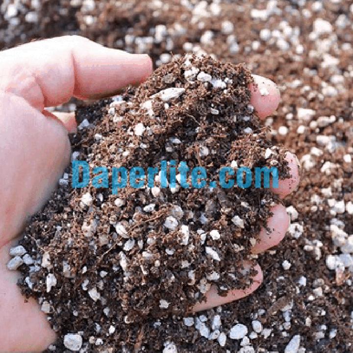 Sử dụng đá Perlite trồng cây ở TpHCM bằng cách trộn hợp hợp đất