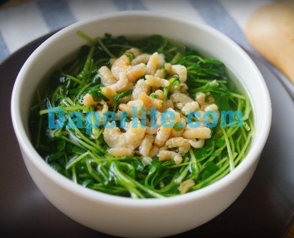 Món ăn ngon với rau mầm nấu tôm