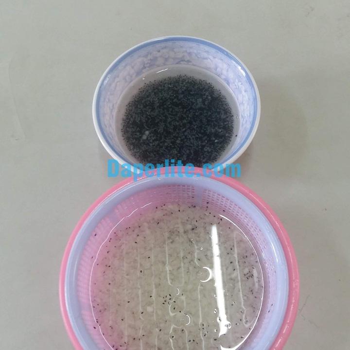 Tách hạt thanh long đơn giản