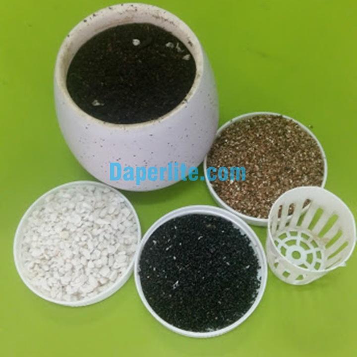 Đá vermiculite, đá perlite trân châu - vật liệu phối trộn tốt để trồng cây