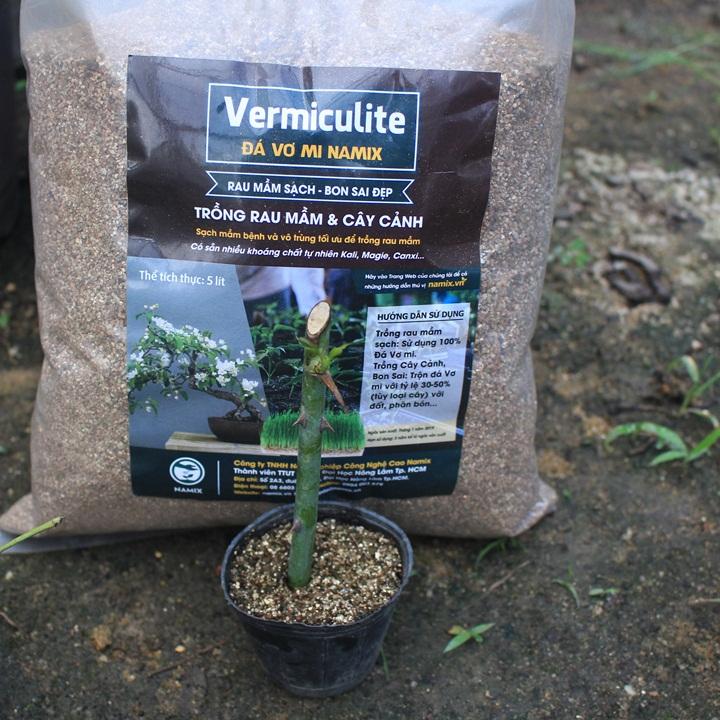 Cách nhân giống hoa hồng bằng cách giâm cành. Đá Vermiculite Namix