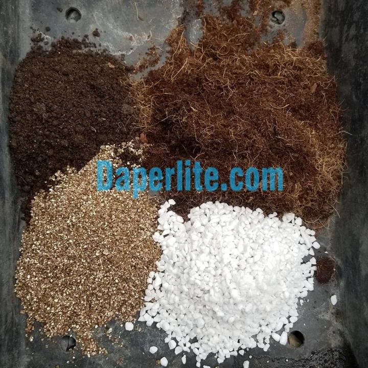 Đá vermiculite Namix trồng sen đá.