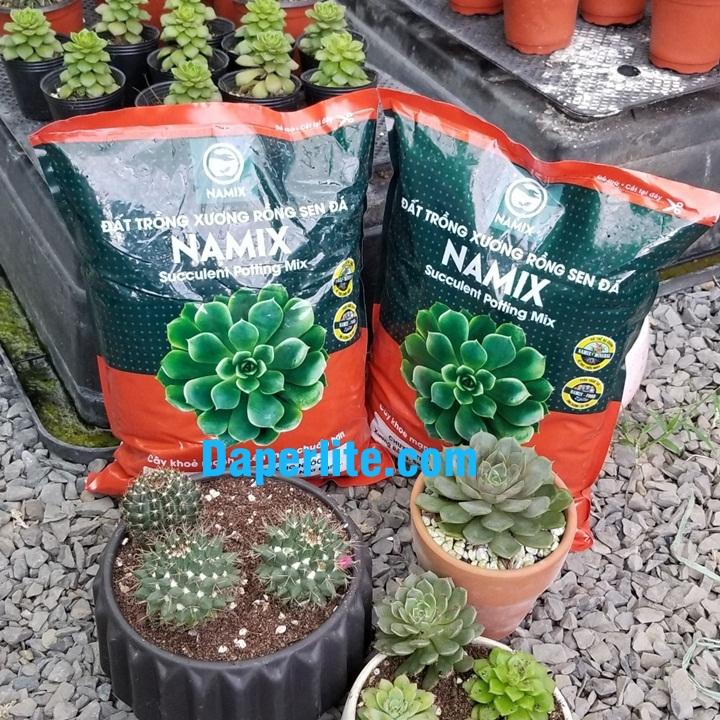 Đất trồng sen đá xương rồng của Namix