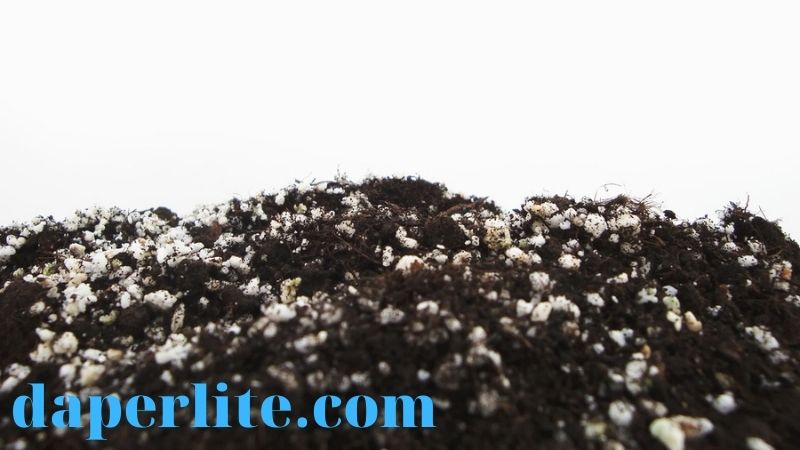 đất trồng có đá perlite